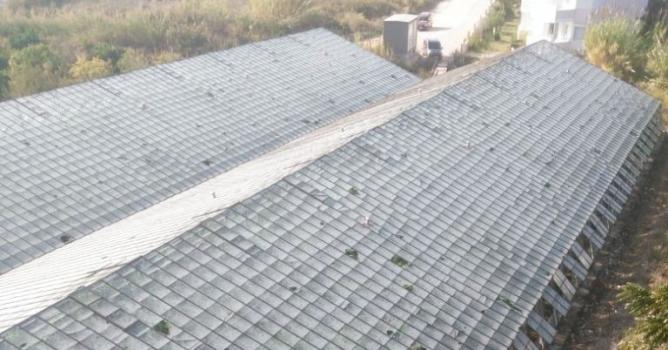 156 dekar tarım  alanı zarar gördü