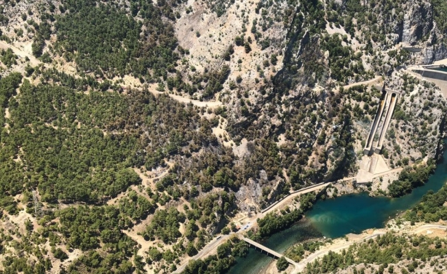 Dört hektar ormanlık alan kül oldu