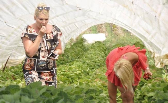 Alanya'dan giden turistlerin tercihi bu bahçe oluyor!