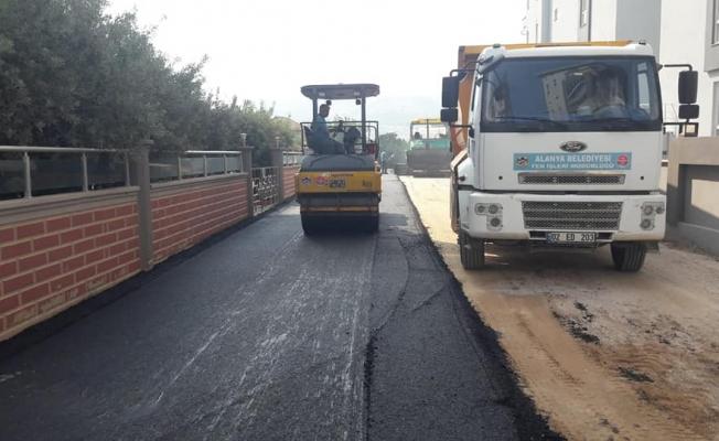 Alanya Belediyesi asfalt çalışmalarını sürdürüyor