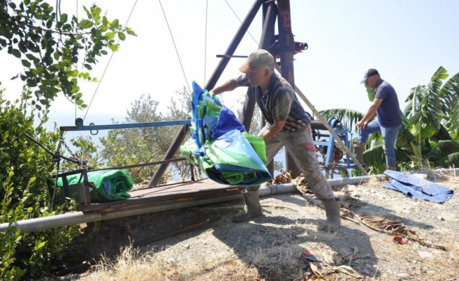 Gazipaşa'da teleferikle muz hasadı