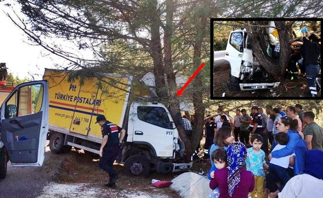 Kargo aracı ağaca çarptı: 1 yaralı