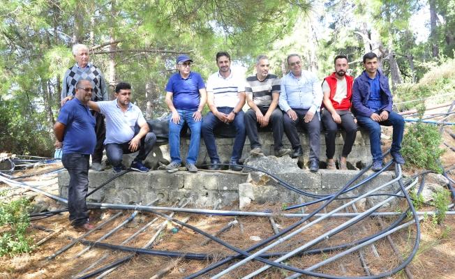 Türkiye'nin muz ihtiyacının 5'te birini karşılayan mahalle susuzluk sebebiyle üretimi bırakıyor