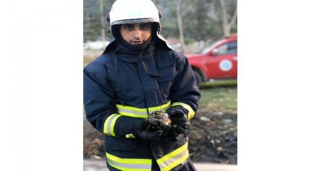 İtfaiye ekipleri kaplumbağayı yanmaktan kurtardı