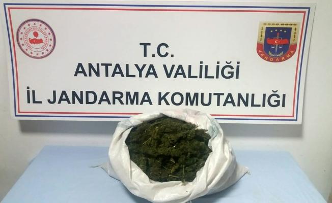Uyuşturucu tacirleri 3 kilo esrarla yakalandı