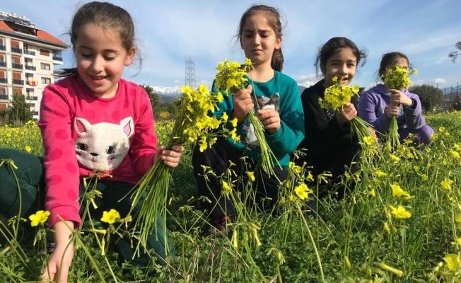 Gazipaşa'da kış ortasında bahar sevinci