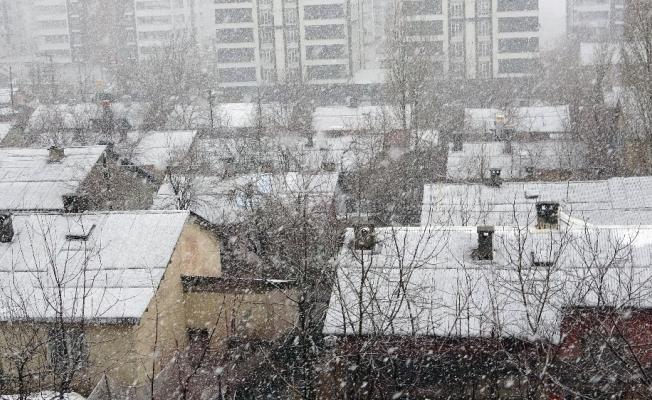 Bitlis'te lapa lapa kar yağışı