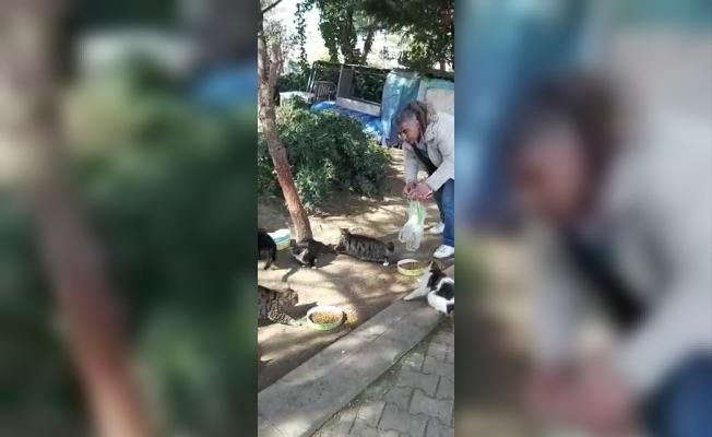 (Özel) Hayvansever, sokak hayvanlarını beslemek için evinden çıktı