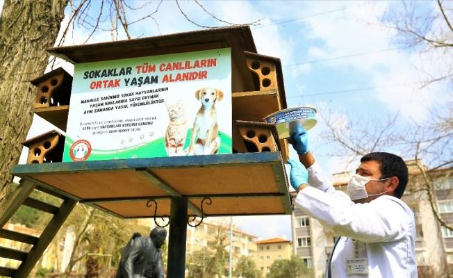 HAYTAP'tan Büyükşehir Belediyesine teşekkür