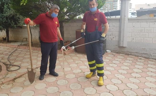 İş yerine giren yılan yakalandı
