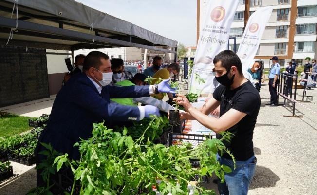 Kastamonu Belediyesi, serasında ürettiği fideleri vatandaşlara dağıttı