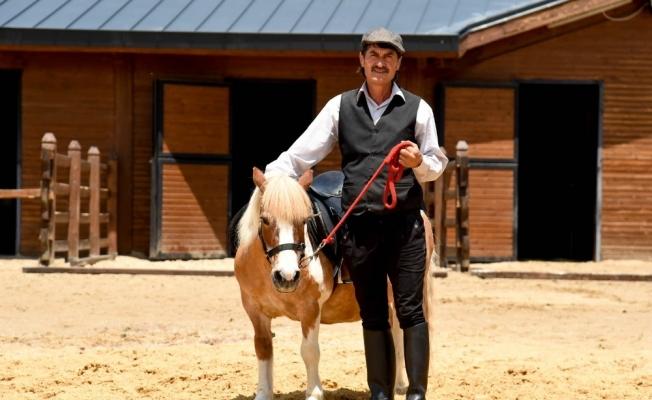 Altınköy'e at çiftliği