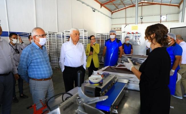 Başkan Gürün, 'Meyve-sebze kurutma' tesisini gezdi