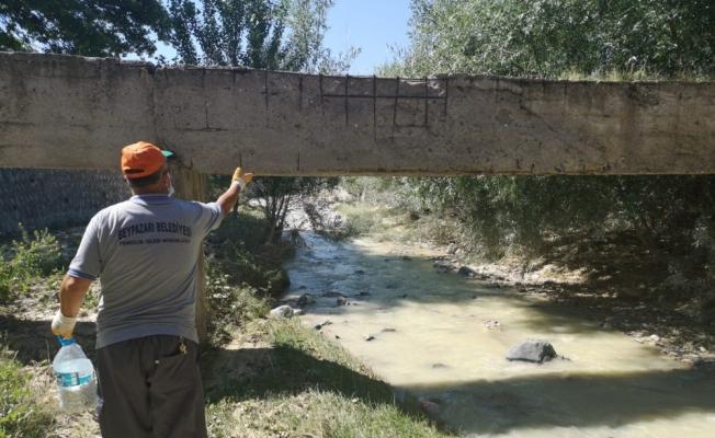 Beypazarı'nda sivrisinek ve uçkunlarla mücadele çalışmaları
