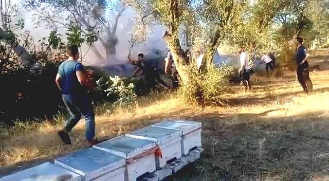 Edremit'te yangını söndürmek için mahalle sakinleri seferber oldu