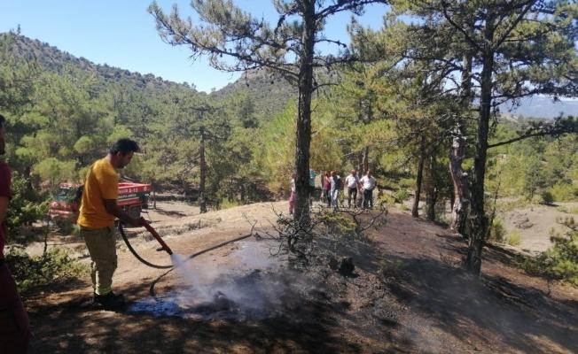 Osmancık'ta aynı yerde iki gün arayla orman yangını
