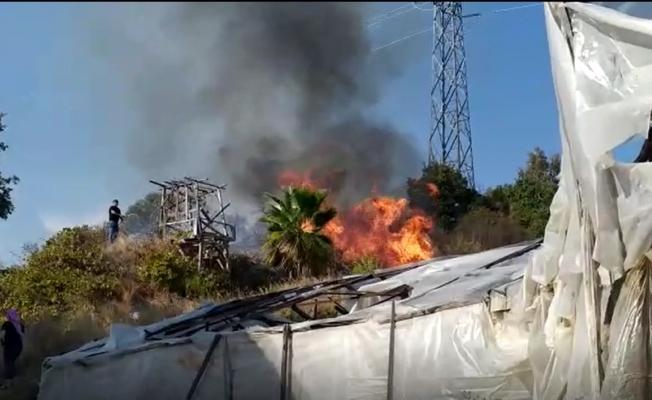 Alanya'da çalılık alanda yangın paniği