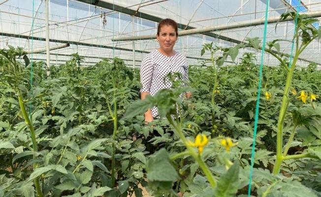 Kadın çiftçi hem üretiyor hem kadın çiftçilere danışmanlık yapıyor