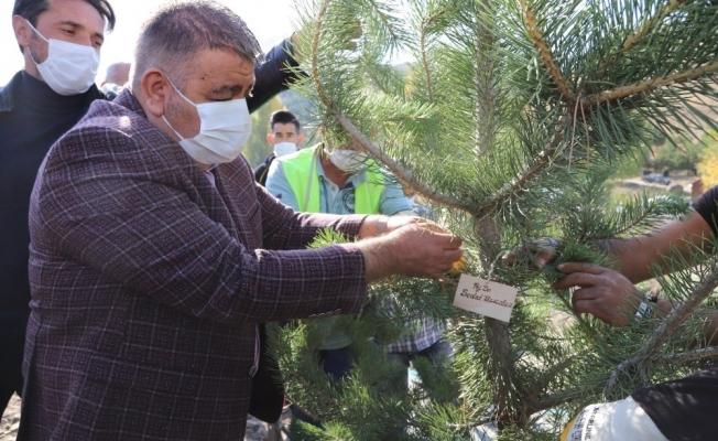 Palandöken Belediyesi hayatını kaybeden sağlık çalışanları adına ağaç dikti