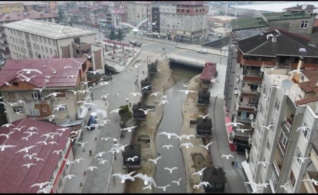 Rize'de drone denetimi başladı