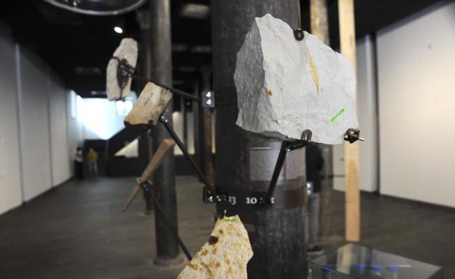 'İKLİMCİL: Mevsimler Sürüklenirken' sergisi SALT Beyoğlu'nda kapılarını açtı