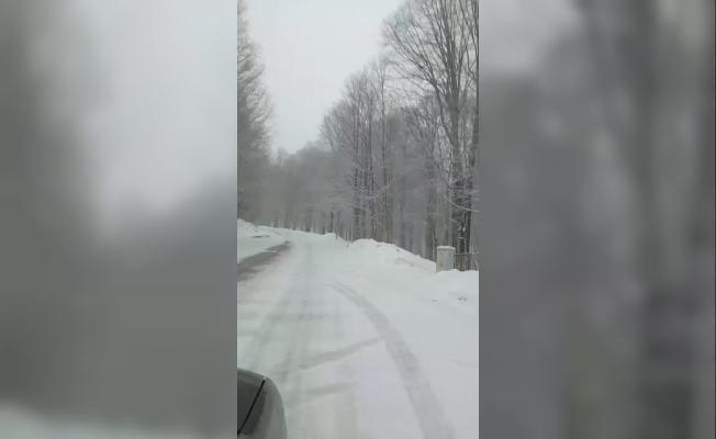 Kocaeli'nin yüksek kesimlerinde kar yağışı etkili oluyor