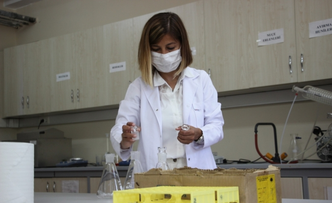 Artvin Çoruh Üniversitesi'nde aromatik bitkilerden ahşap malzeme koruyucusu üretildi