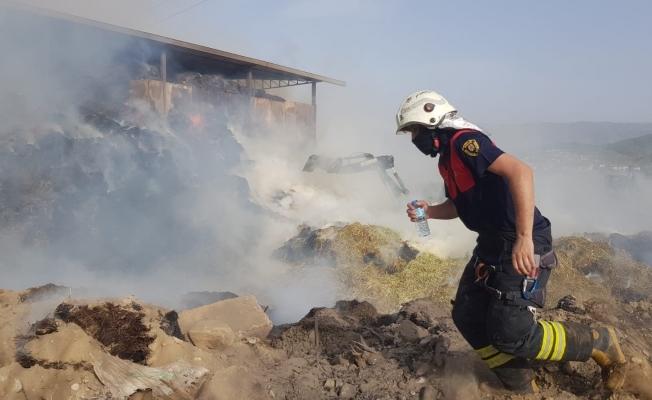 Aydın'da hayvan çiftliğinde yangın