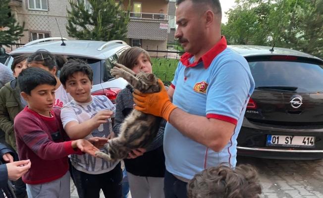 Çatıda mahsur kalan hamile kediyi itfaiye ekipleri kurtardı