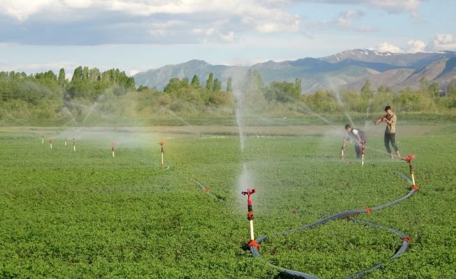Çiftçiden kuraklık endişesine sondajlı çözüm