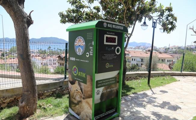Kaş'ta sokak hayvanları için mamamatik hizmeti