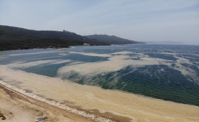 (Özel) Marmara'da denizin dibi zindana döndü