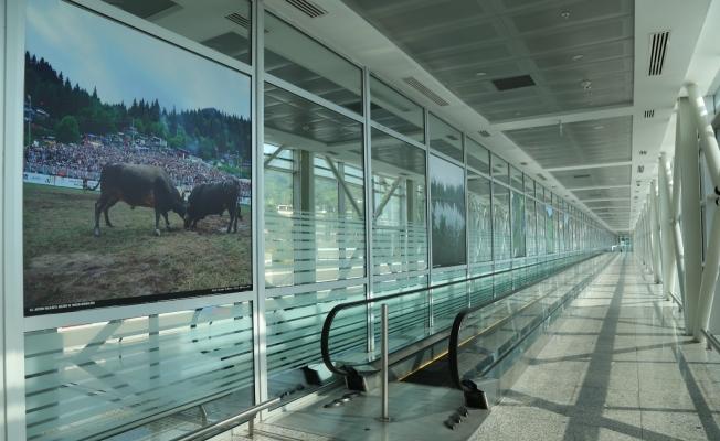 Sarp Sınır Kapısı'nın 1 Haziran'da turist geçişlerine açılacak olması bölge esnafını heyecanlandırdı