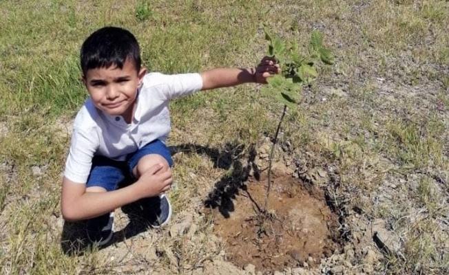 Alanya'da minik öğrenciler diktikleri fidanları unutmadı