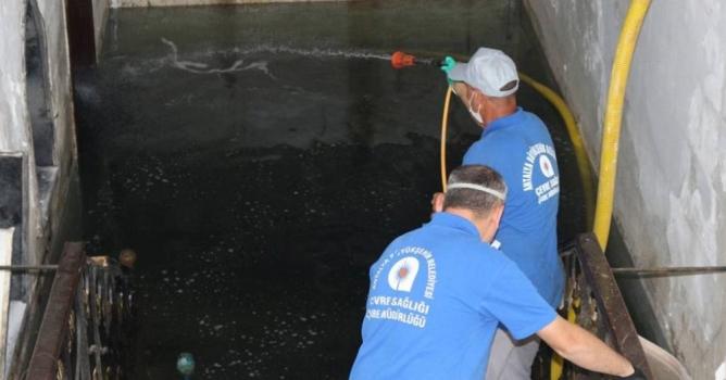 Alanya'da sineksiz  yaz için mücadele