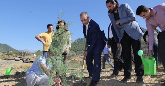ALKÜ Kestel Kampusü'nü ağaçlandırıyor