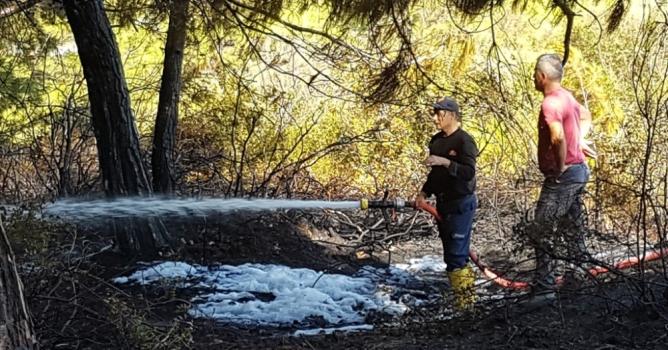 Eline ağaç dalını  alan alevlere koştu