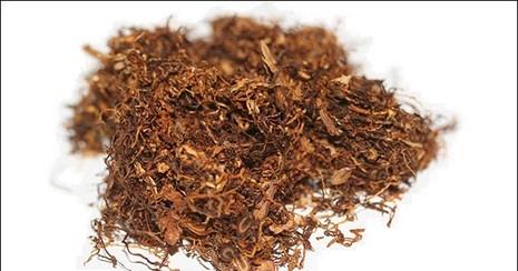 Kaliteli Tütünün Farkını Tatmak İsteyenler Buraya