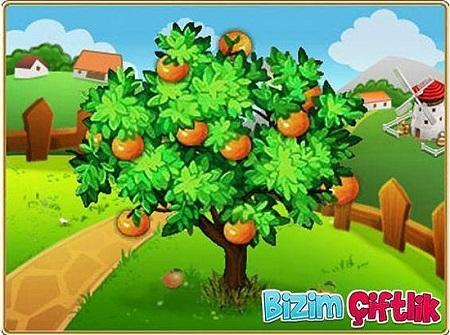 Popüler Çiftlik Oyunları Oyna