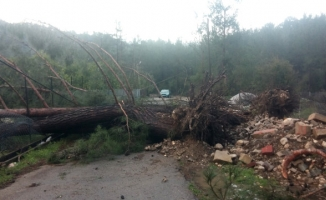 Antalya Şiddetli Fırtınaya Teslim Oldu