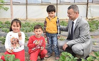 Çocuklar tarımı öğrenecek