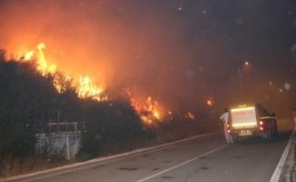 Alanya'da bahçe yangını korkuttu!
