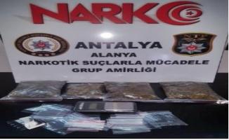 Alanya'da kargodaki uyuşturucu polise takıldı