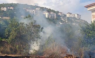 Alanya'da çıkan yangın evlere sıçramadan söndürüldü!