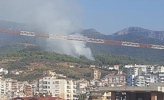 Alanya'da ciğerimiz yanıyor!