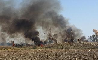 Sazlık alanda çıkan yangın kontrol altına alındı