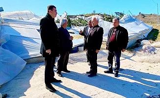 Başkan Türkdoğan, Demirtaş'ta seraları inceledi