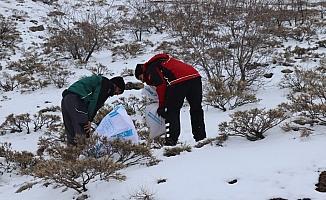 İHH ekipleri bu kez dağ keçilerini besledi