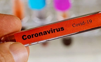 Koronavirüsü Türkiye sınırına kadar dayandı