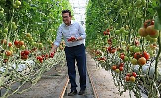 Çiftçiye faizsiz ve indirimli kredi desteği